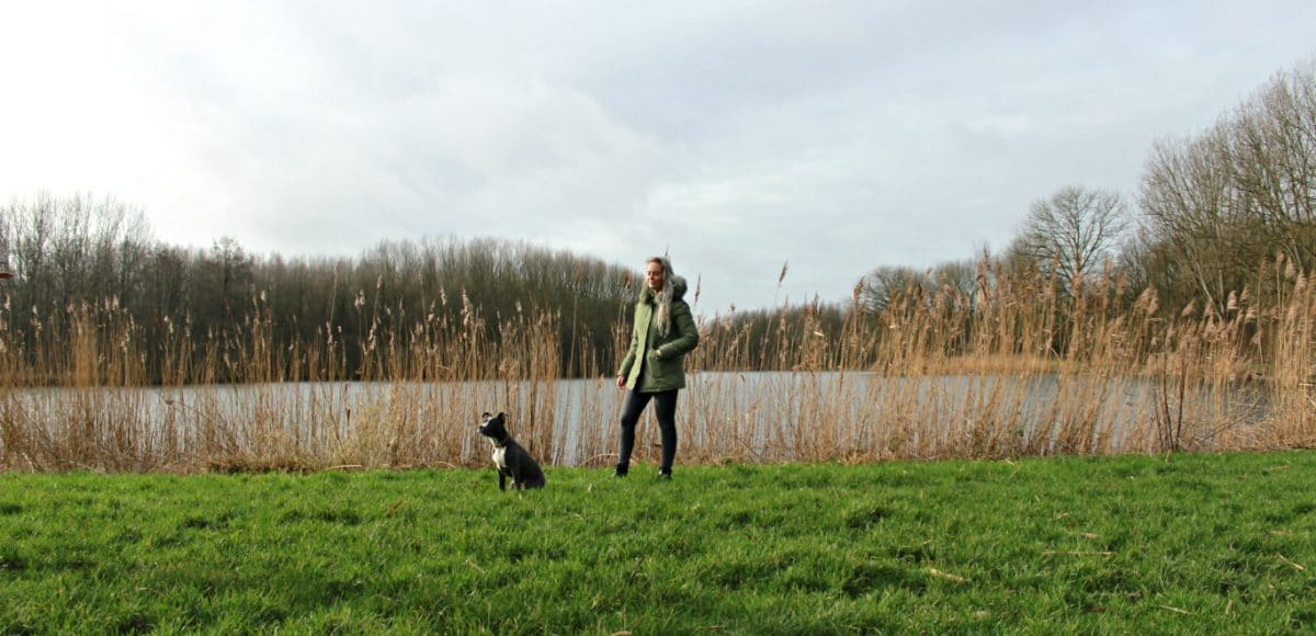 Als je op zoek bent naar een ontspannen plek in Rotterdam, overweeg dan een bezoek aan de rustgevende Lage Bergse