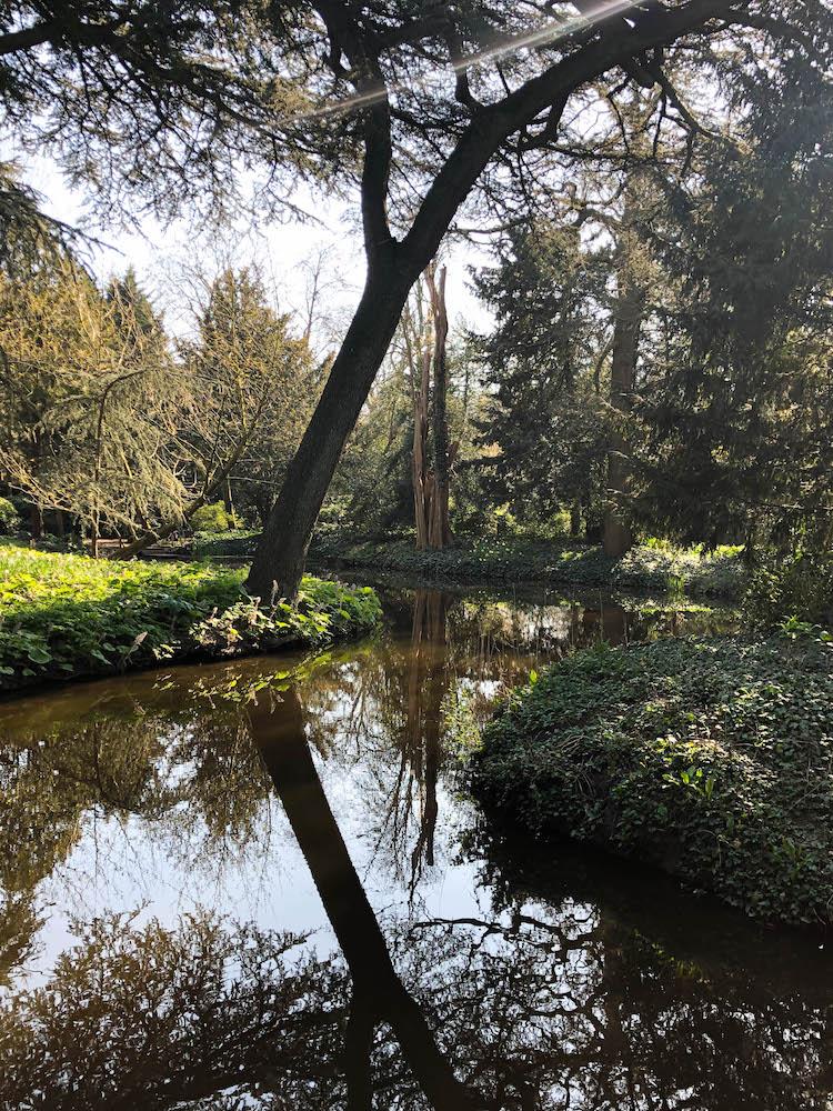 Een verborgen parel dichtbij Het Park in Rotterdam: Historische tuin Schoonoord Rotterdam.