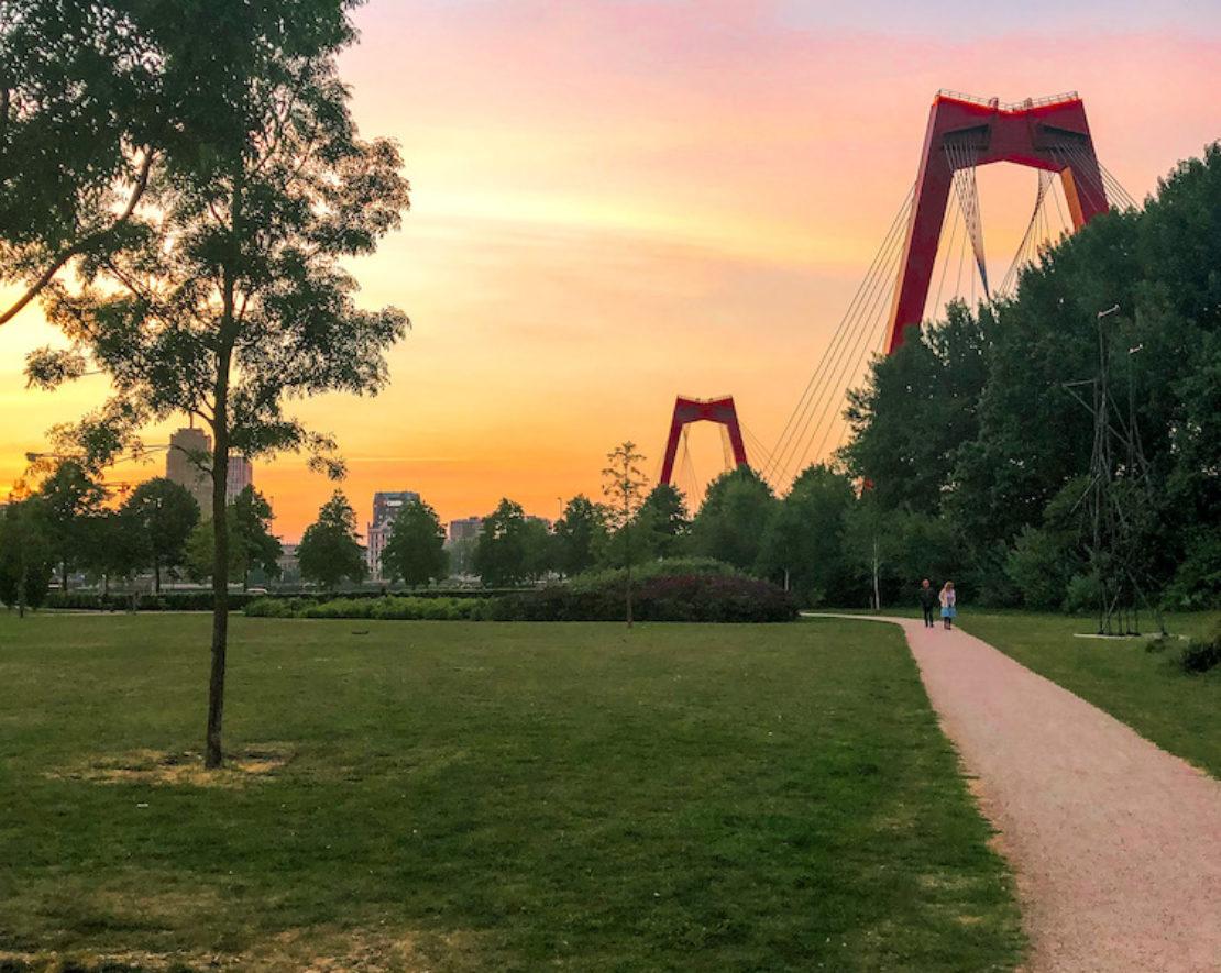 Vanaf Ons Park op Noordereiland heb je, zoals je hierboven kunt zien, een prachtig uitzicht op de Willemsbrug. Hier kun je zeker mooie kiekjes maken. Het is een klein parkje en het is hier meestal lekker rustig, met een paar wandelaars en hier en daar een groepje sporters. Het is fijn om hier te genieten van het uitzicht, van het groen en van de konijntjes die vrij rondlopen. Een mooi tijdstip om het te fotograferen is tijdens de zonsondergang.