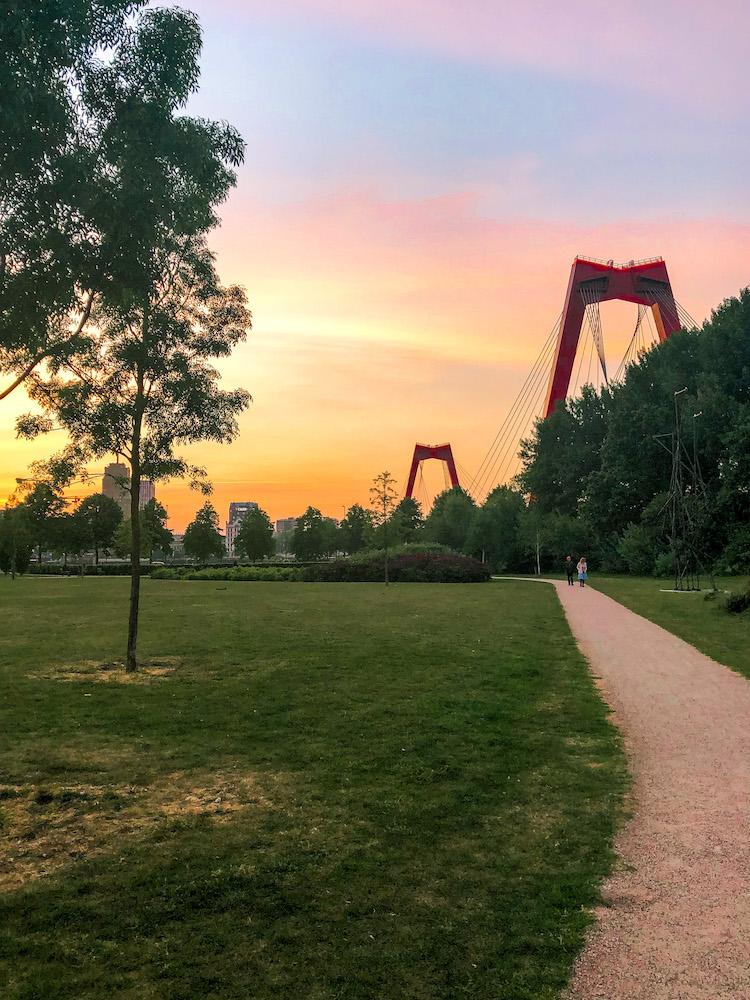 Ons Park in Rotterdam heeft een prachtig uitzicht op de Willemsbrug. Het is een fijne plek voor een korte wandeling of om heerlijk te gaan picknicken. Het is een onbekende plek op het Noordereiland.