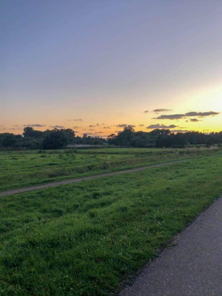 Voor een prachtig groen gebied in Rotterdam moet je bij de Lage Bergse Bos zijn, gelegen tussen Hillegersberg en Bleiswijk.